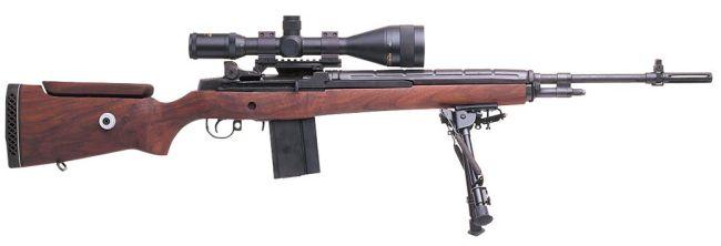 Name:  M21 Sniper rifle #1.jpg Views: 643 Size:  14.7 KB