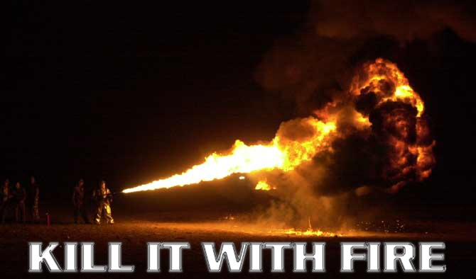Name:  Kill it with fire.jpg Views: 565 Size:  46.8 KB